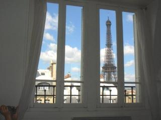 Apartment near Tour Eiffel   Avenue Bosquet